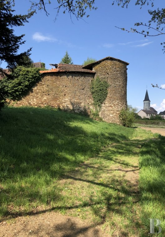 Castles / chateaux for sale - aquitaine - A listed, medieval castle, with romantic ruins, in parklands  on the edge of a village renowned for its quality of life in the Green Périgord area