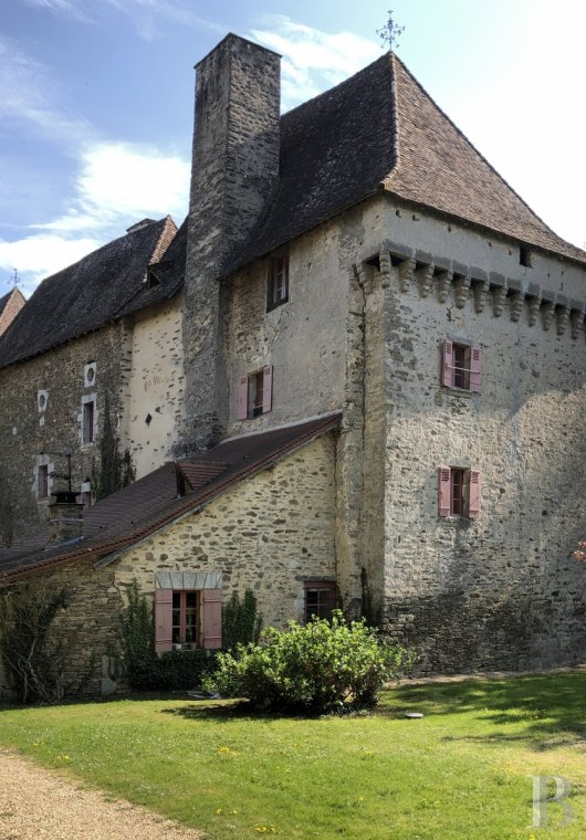 chateaux for sale France aquitaine   - 3