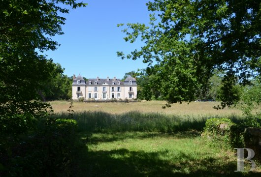 chateaux for sale France pays de loire   - 2