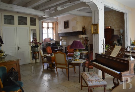 mansion houses for sale France center val de loire   - 6