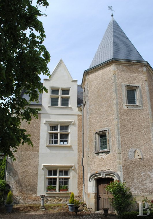 France mansions for sale center val de loire manors for - 2