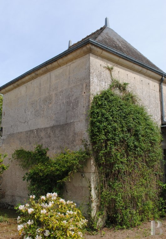 France mansions for sale center val de loire manors for - 5