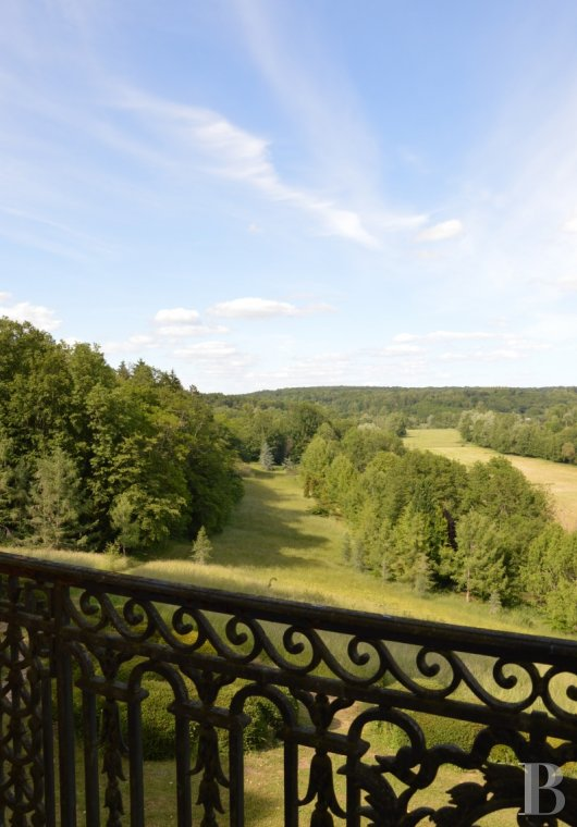 chateaux for sale France champagne ardennes   - 3