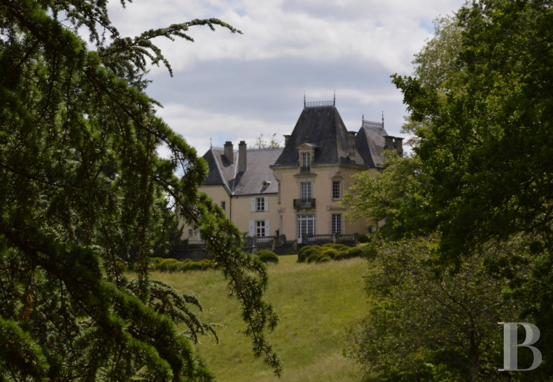 chateaux for sale France champagne ardennes   - 1