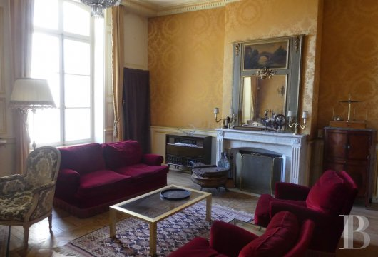 mansion houses for sale France burgundy   - 6