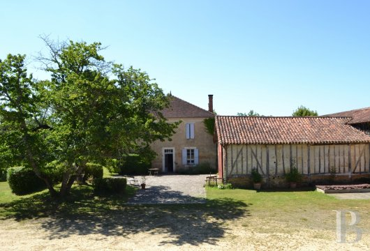 vineyards for sale France midi pyrenees   - 8