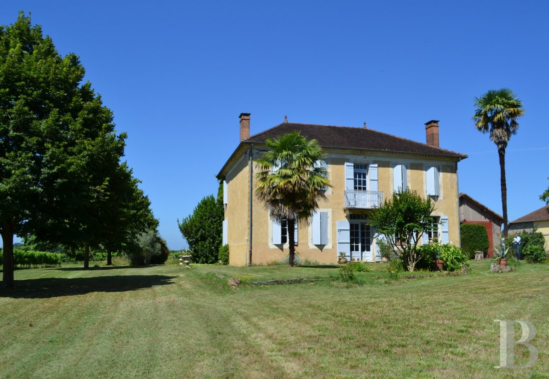 vineyards for sale France midi pyrenees   - 2