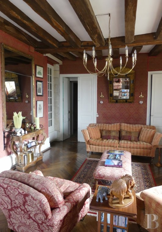 chateaux for sale France center val de loire   - 5