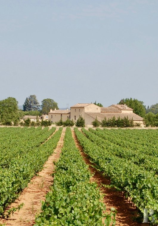 traditional mas house for sale languedoc roussillon traditional mas - 2