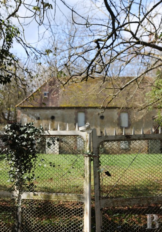 Castles / chateaux for sale - burgundy - An elegant, 19th century chateau awaiting restoration, surrounded by 15 ha of woods  in a densely wooded setting, 1½ hours from Paris, in Burgundy