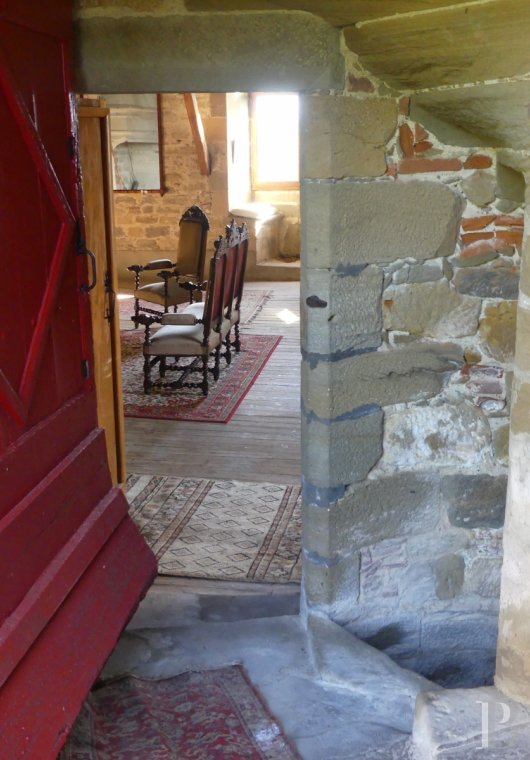 chateaux for sale France midi pyrenees   - 12