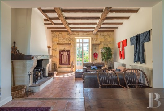 chateaux for sale France aquitaine 4530  - 5