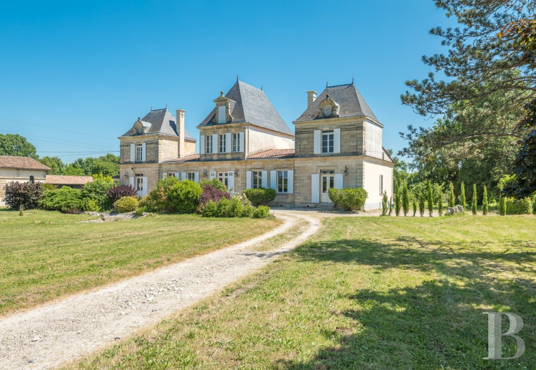 chateaux for sale France aquitaine 4530  - 1