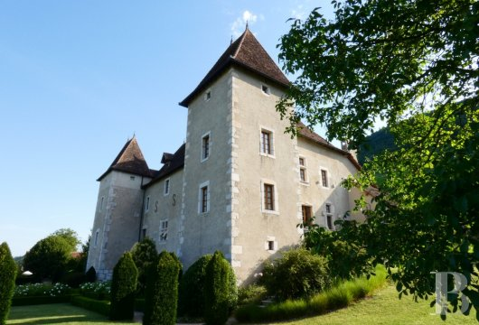 chateaux for sale France rhones alps   - 5