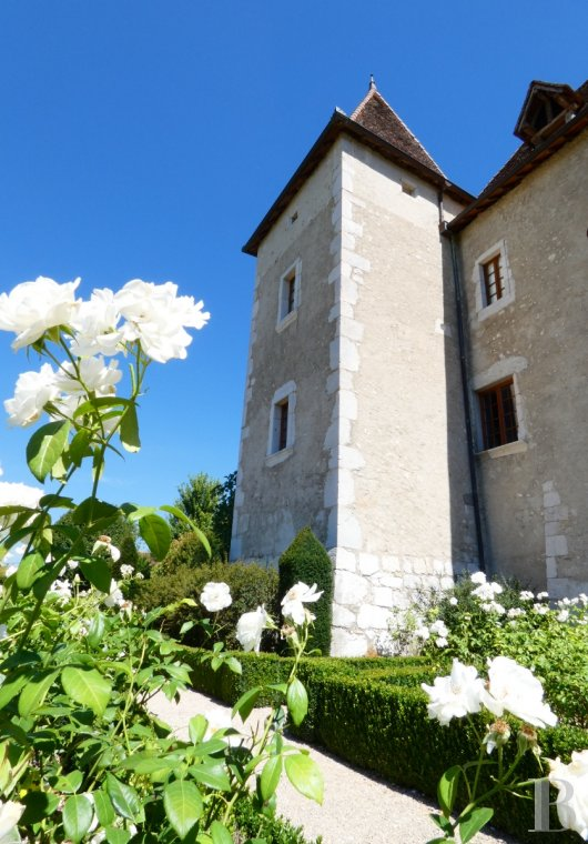 chateaux for sale France rhones alps castles chateaux - 6