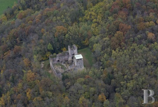 Castles / chateaux for sale - rhones-alps - Listed ruins of a feudal castle  in the French department of Ain