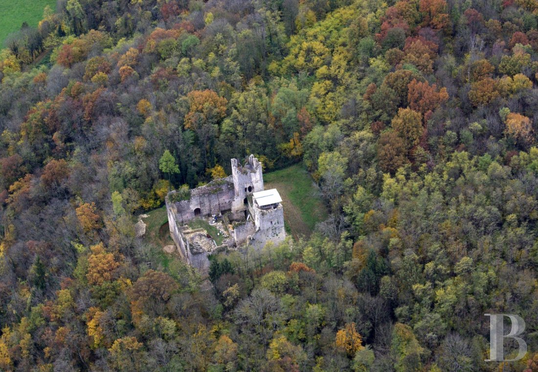 chateaux for sale France rhones alps   - 1