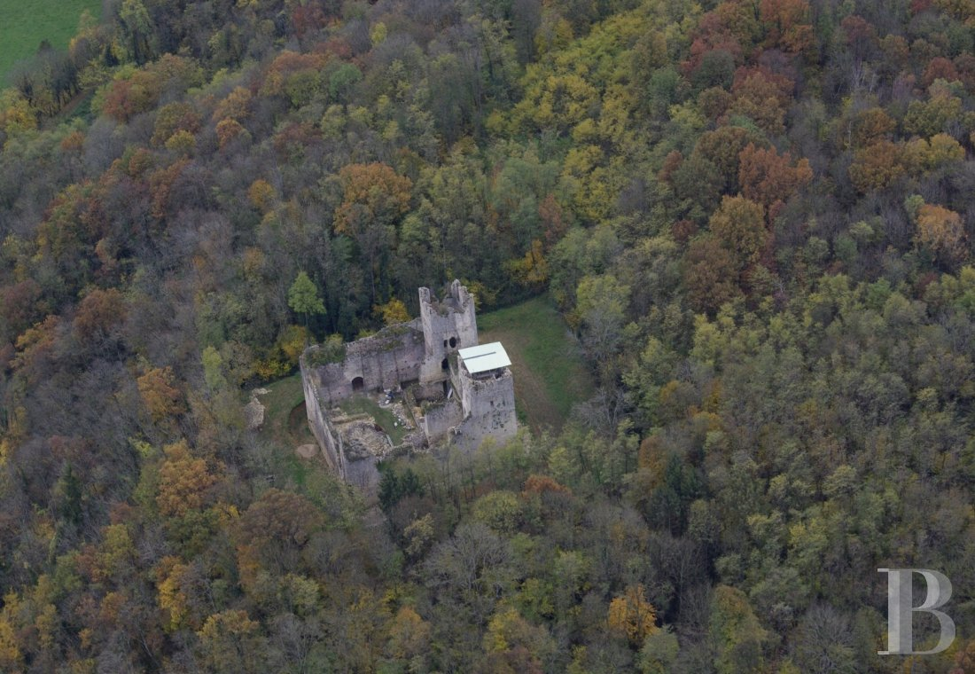 chateaux for sale France rhones alps property listed - 1