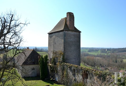 chateaux for sale France center val de loire fortress bourbonais - 2