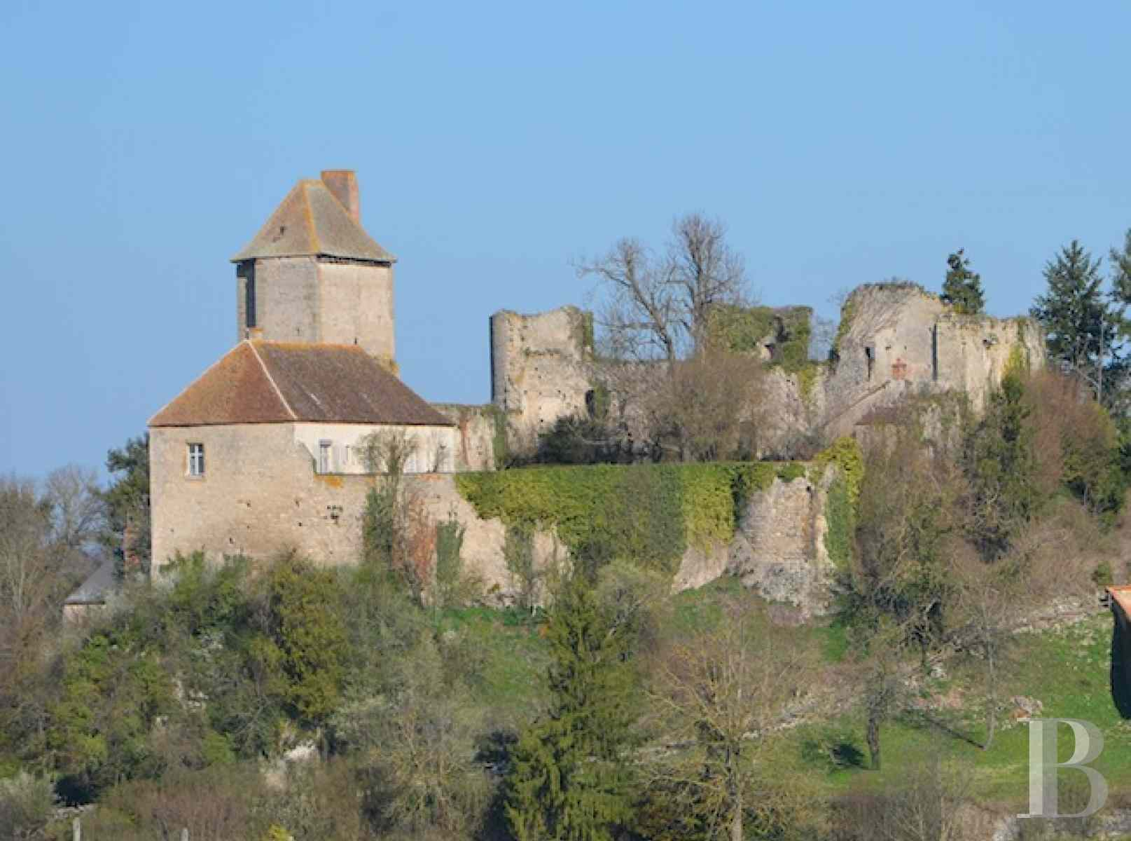 chateaux for sale France center val de loire fortress bourbonais - 1 zoom