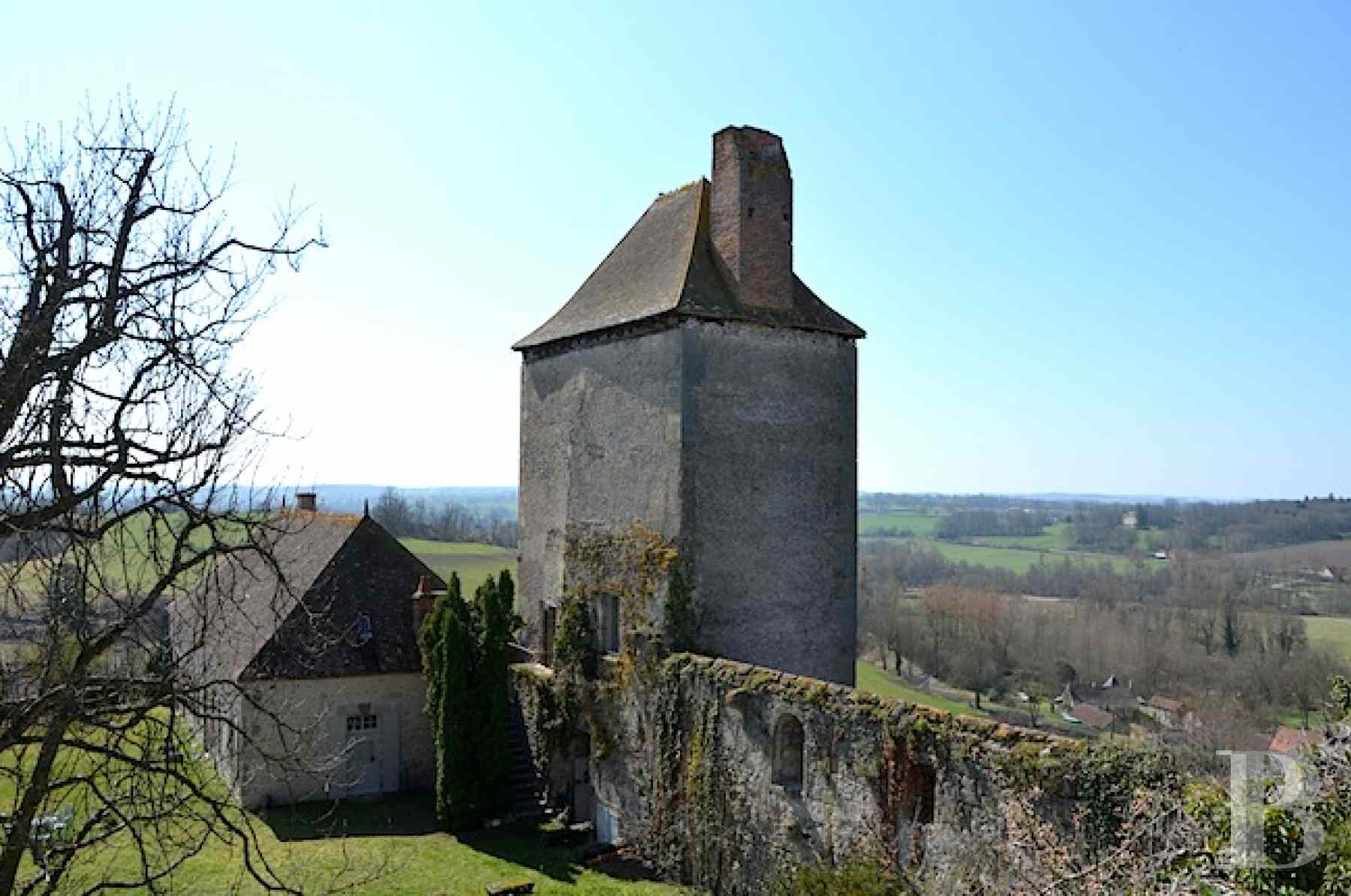 chateaux for sale France center val de loire fortress bourbonais - 2 zoom