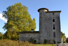 Historic buildings for sale - aquitaine - A 13th century listed Seigneury, redesigned in the 16th and 17th centuries, in the Albret region