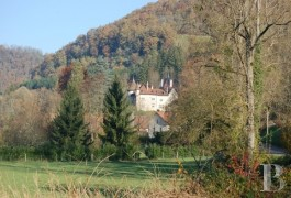 Castles / chateaux for sale - rhones-alps - A castle and vast outbuildings in a 19 ha estate between Savoy and Bugey 1 hour from Geneva