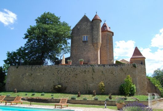 chateaux for sale France aquitaine bearn region - 4