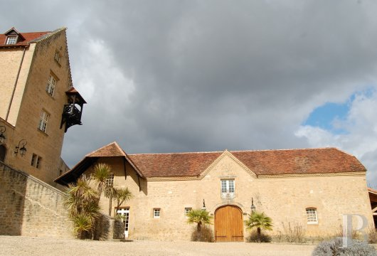 chateaux for sale France aquitaine bearn region - 5