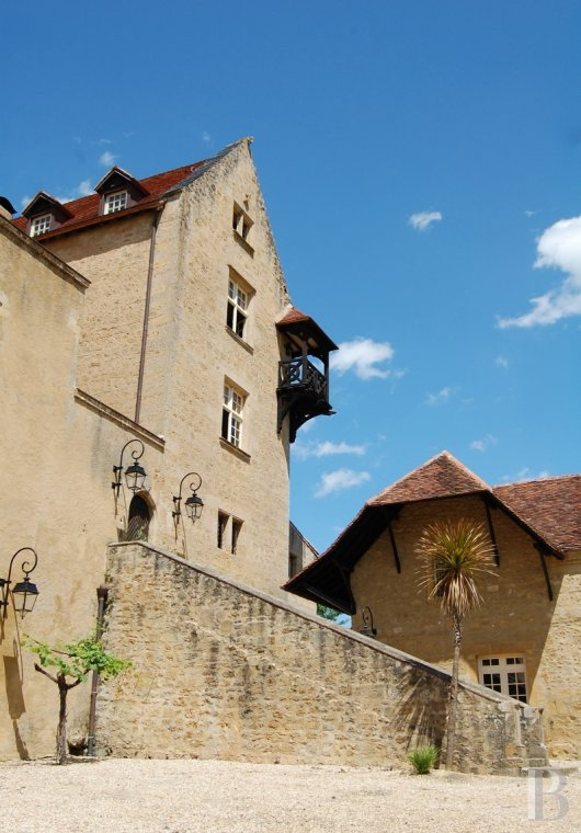 chateaux for sale France aquitaine bearn region - 3
