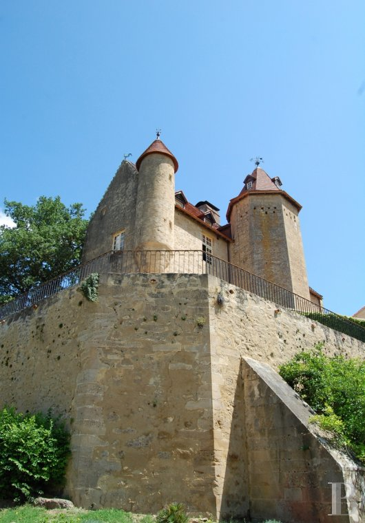 chateaux for sale France aquitaine bearn region - 6