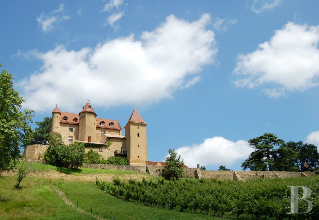 chateaux for sale France aquitaine bearn region - 1