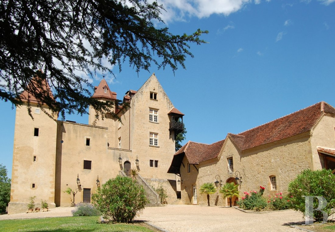 chateaux for sale France aquitaine bearn region - 2