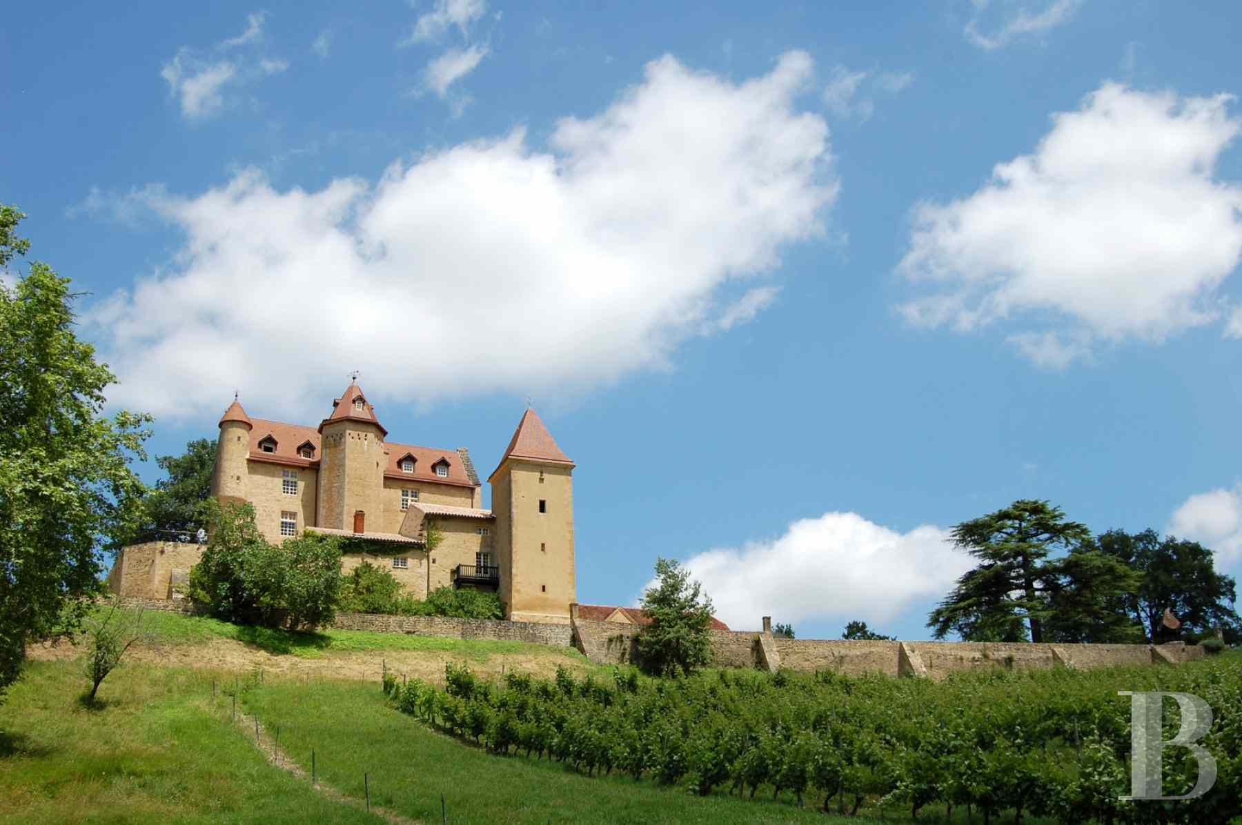 chateaux for sale France aquitaine bearn region - 1 zoom