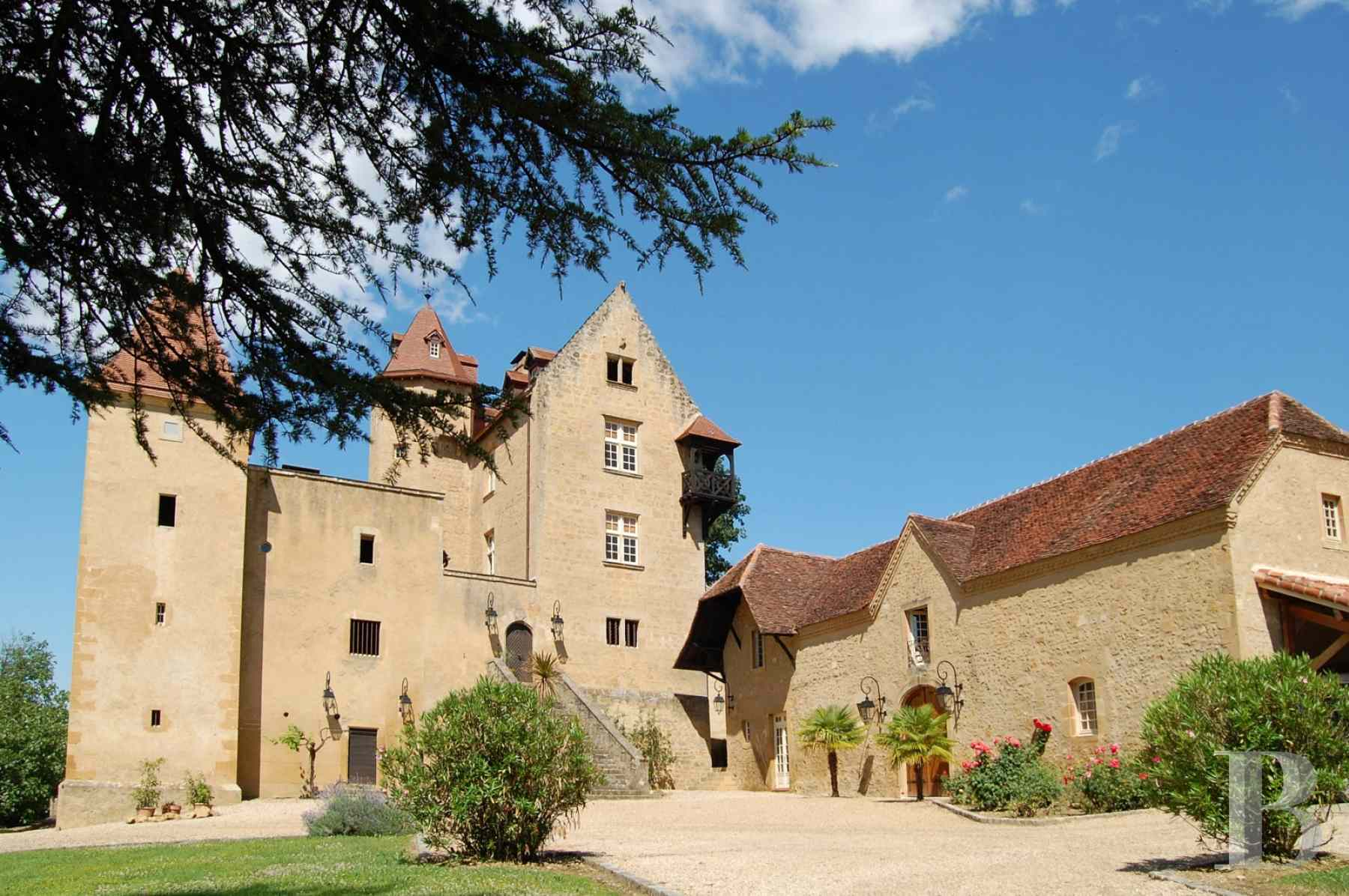 chateaux for sale France aquitaine bearn region - 2 zoom