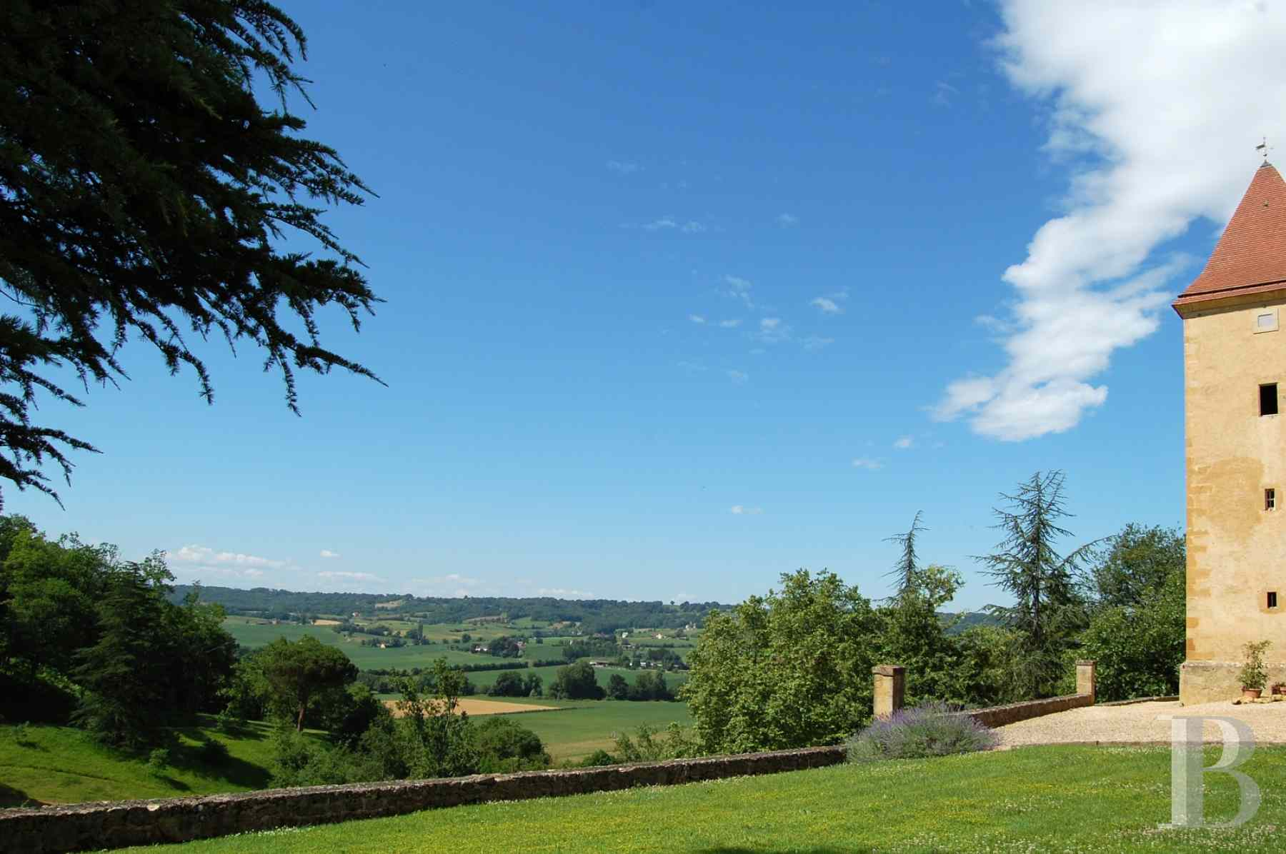 chateaux for sale France aquitaine bearn region - 20 zoom
