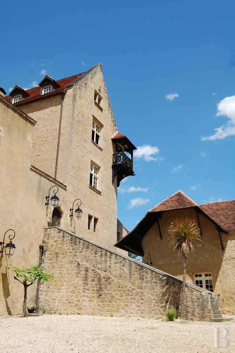 chateaux for sale France aquitaine bearn region - 3 zoom