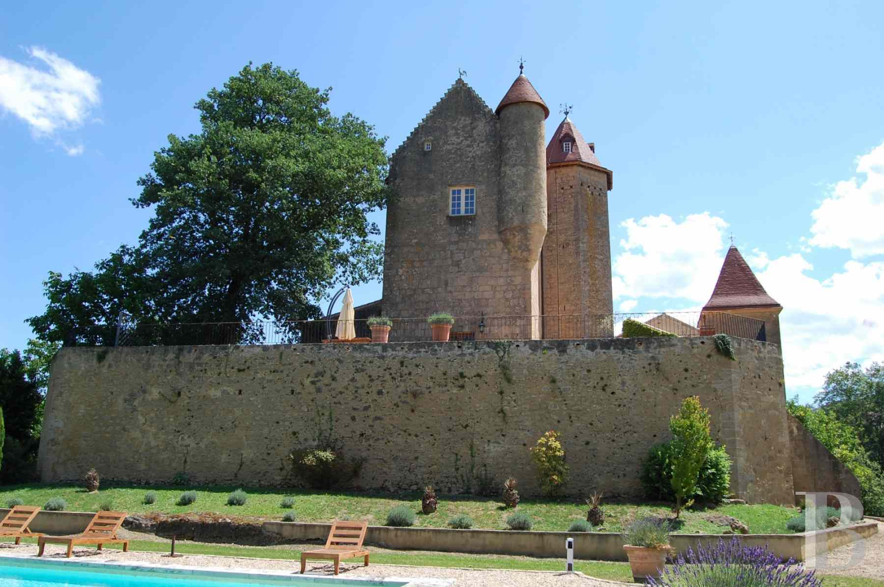 chateaux for sale France aquitaine bearn region - 4 zoom