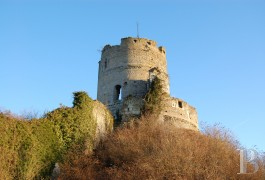 Historic buildings for sale - upper-normandy - The 11th/12th century ruins of a listed castle 70 km from Paris