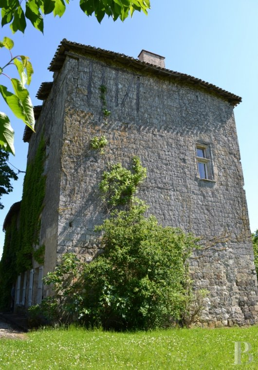 chateaux for sale France aquitaine property tower - 2