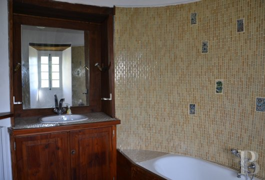 chateaux for sale France languedoc roussillon   - 10