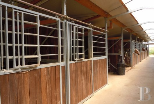 french equestrian properties for sale burgundy property view - 8