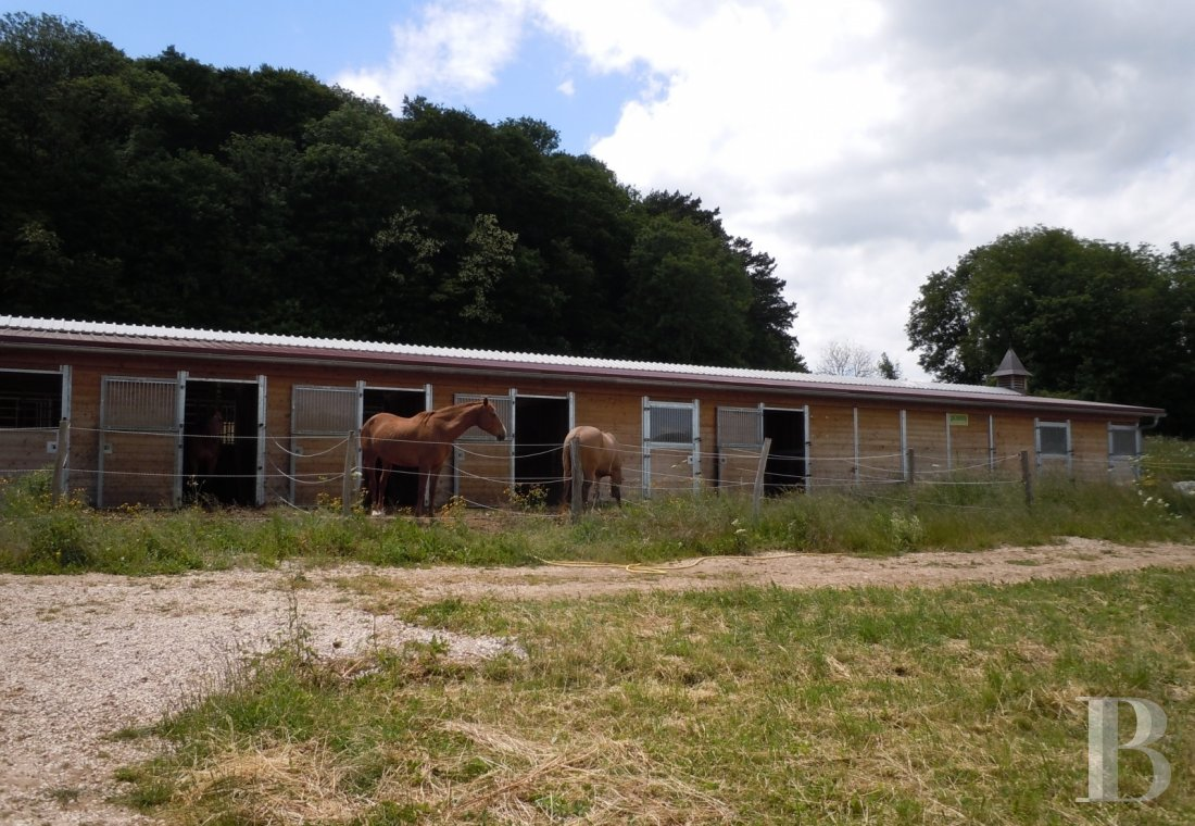 french equestrian properties for sale burgundy property view - 5
