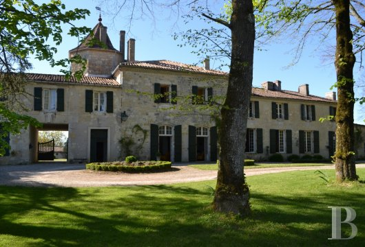 chateaux for sale France aquitaine   - 4