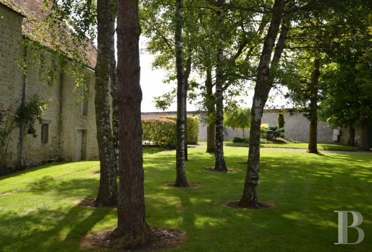 chateaux for sale France center val de loire   - 17