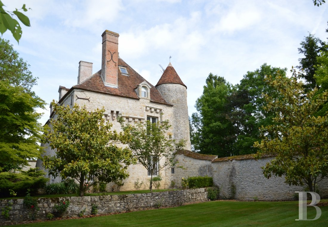 chateaux for sale France center val de loire   - 1