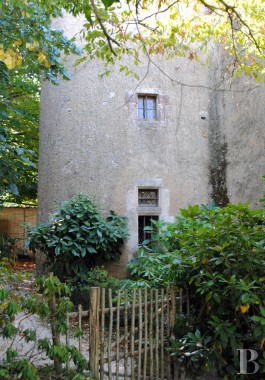 France mansions for sale poitou charentes house water - 6