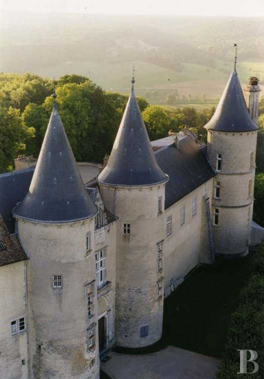 Castles / chateaux for sale - lorraine - In the south of the Lorraine region, an outstanding, listed castle and its 1,143 hectare forest estate