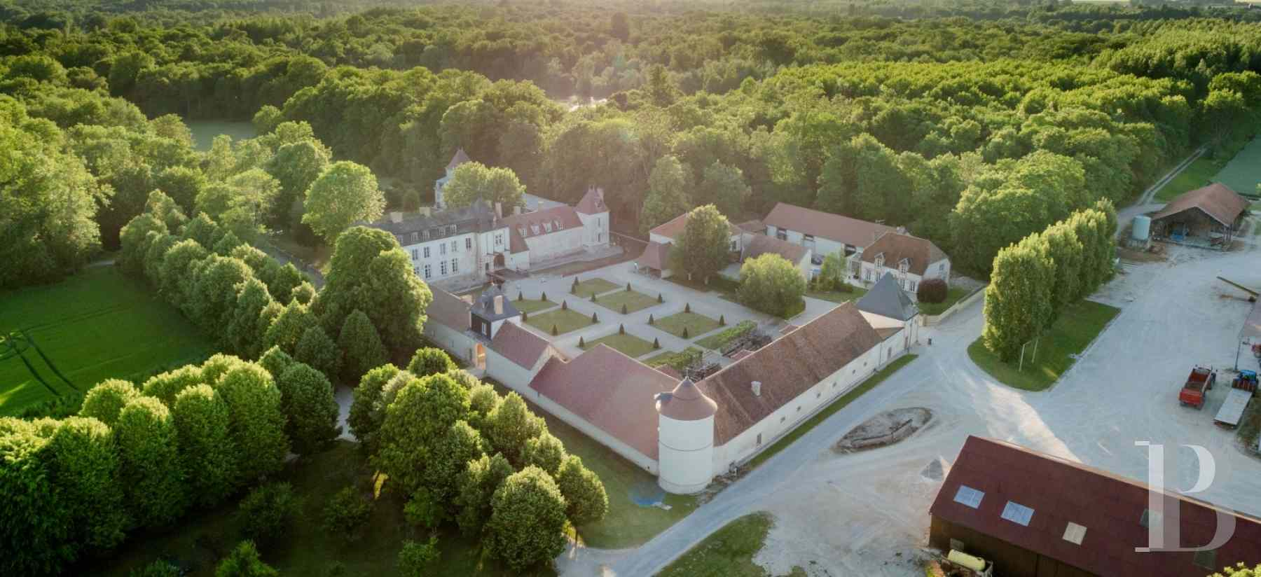 chateaux for sale France champagne ardennes 16th 18th - 4 zoom