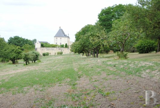 castles for sale France center val de loire   - 17